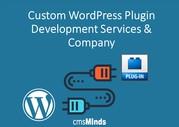 Custom WordPress Plugin Development Services & Company